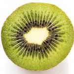 credence cuisine kiwi